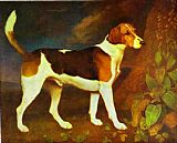 George Stubbs A Foxhound,Ringwod painting