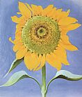 Georgia O'Keeffe Sunflower, New Mexico 1935 painting