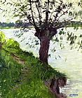 Gustave Caillebotte Willow on the Banks of the Seine painting