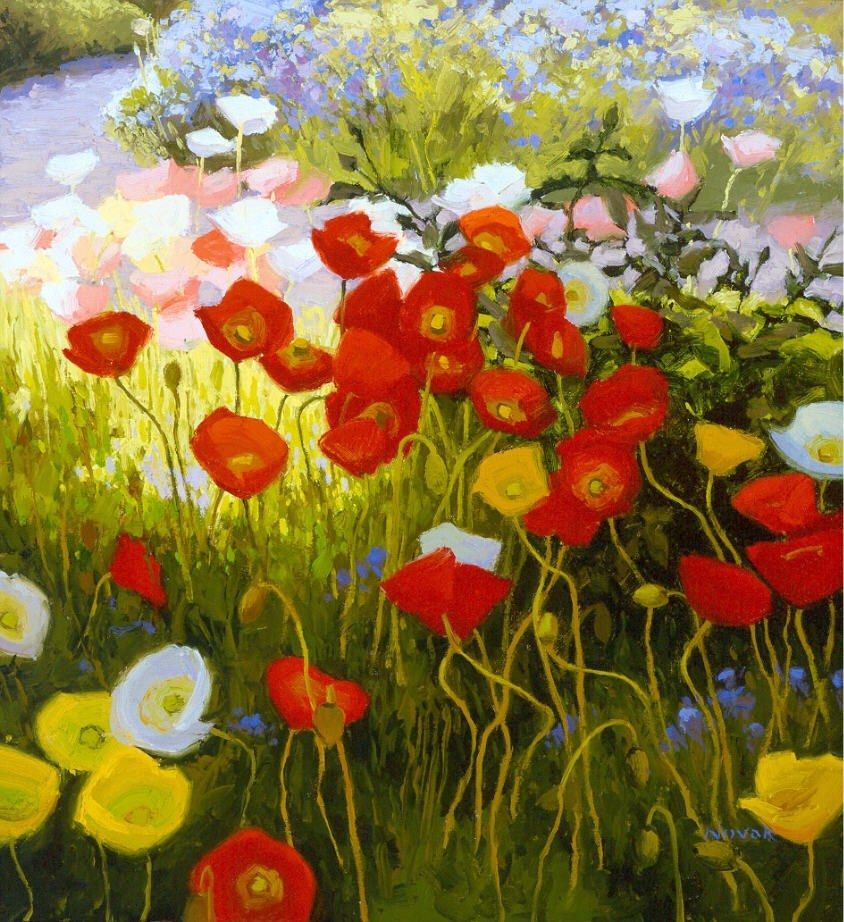 Shirley Novak Shadow Poppies, Sunlit Poppies