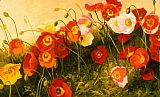Shirley Novak Poppies In Celebration painting