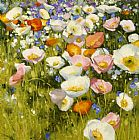 Shirley Novak Sunny Meadow painting