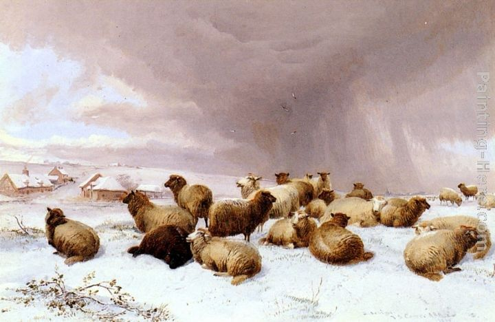 Thomas Sidney Cooper Sheep In Winter