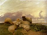 Thomas Sidney Cooper Sheep In Canterbury Water Meadows painting